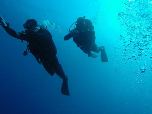 Advanced course - Divers - Navigation