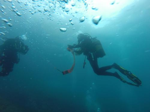 Divers with a Surface Maker Buoy